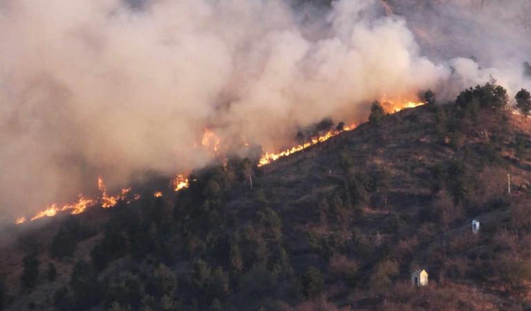 Incendio a Givoletto: evacuate diverse famiglie. I carabinieri trovano gli inneschi (dolosi)