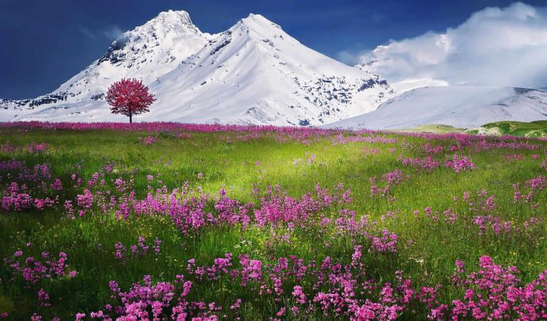 Dopo la siccità arriva il maltempo in Piemonte, 1 metro di neve sulle Alpi e scuole chiuse