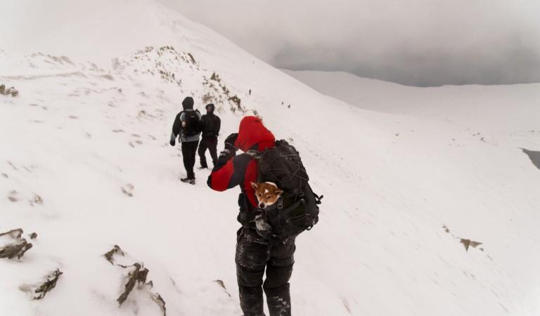 70enne si sente male mentre risale le piste da sci. Niente soccorsi a causa del maltempo. Ma i carabinieri riescono a salvarlo