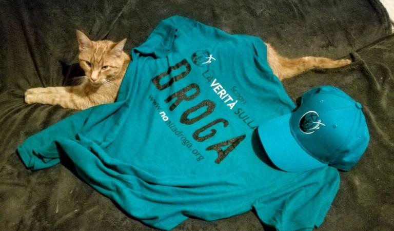 Nico il gatto antidroga