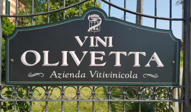 Gita fuori porta: in viaggio verso Cascina Olivetta