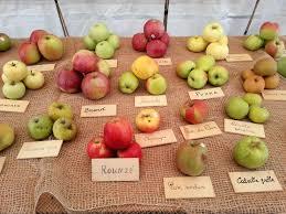 Antiche mele piemontesi, presidio Slow Food e vanto della nostra città