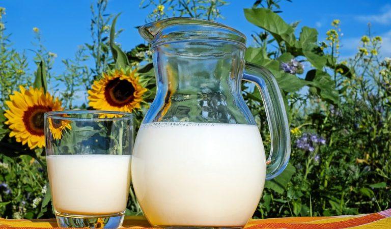 Torino, arriva un nuovo latte dalla Centrale: 2 anni di ricerca per un latte super digeribile