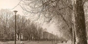 Parco Michelotti demolizione