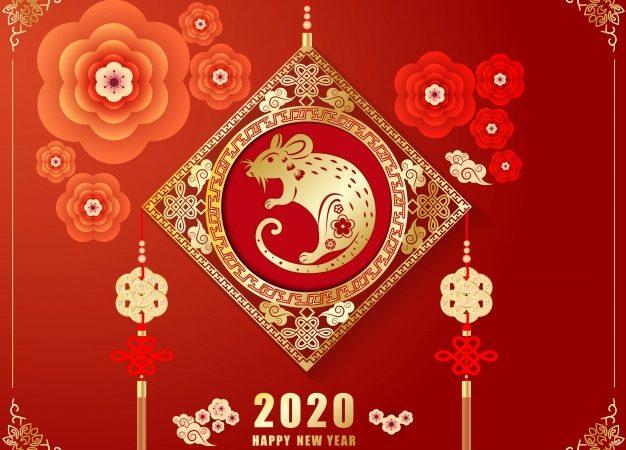 Capodanno Cinese. Anche a Torino si festeggia l'Anno del Topo
