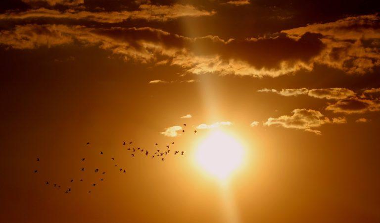 L'estate NON sta finendo: a Torino e in Piemonte anche 31 gradi sino a metà settimana
