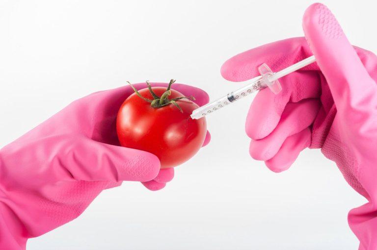 Modified, il marcio degli OGM