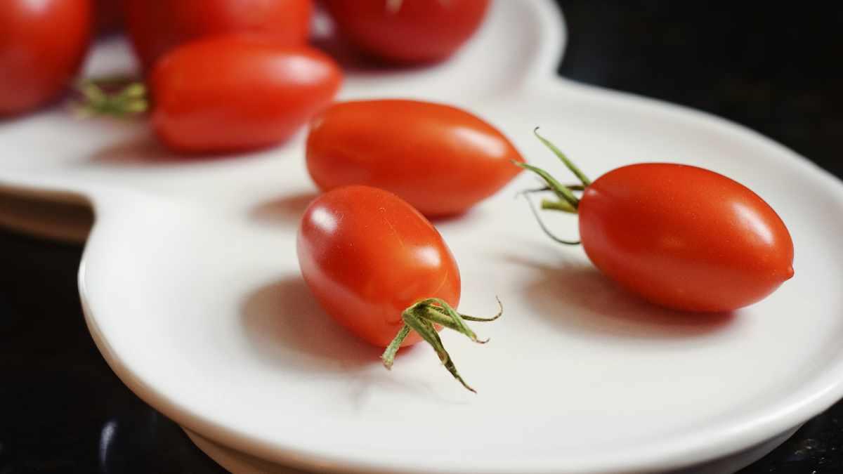 Salsa passata di pomodoro richiamata dal commercio