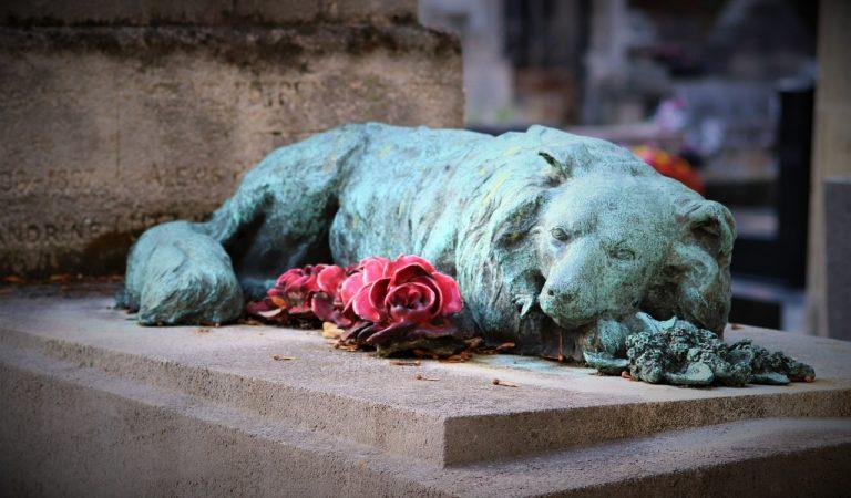 Torino, cimiteri per animali nei giardini pubblici?