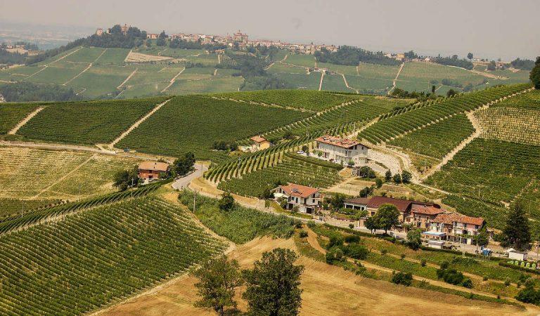 Agriturismo La Gran Collina, a pochi chilometri da Torino tra Alba e Asti