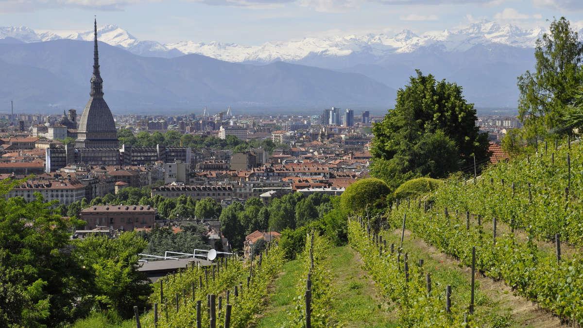 Vigna della Regina Torino