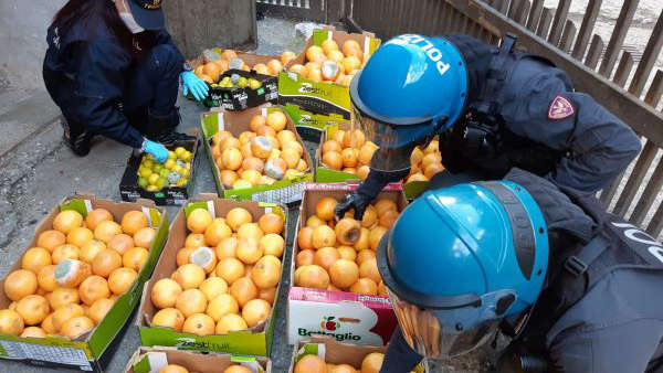 Frutta mal conservata sequestrata a Torino