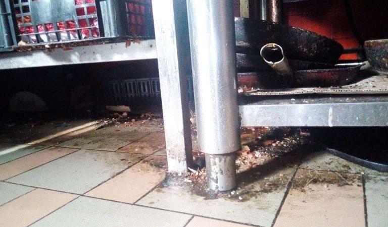 Negozi da paura a Torino: sequestrati cibi e cucina di ristorante in precarie condizioni igieniche. FOTO e VIDEO