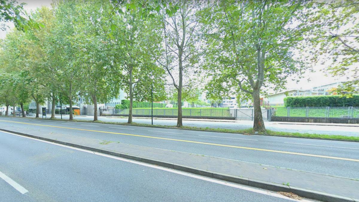 Potatura alberi in corso Regina