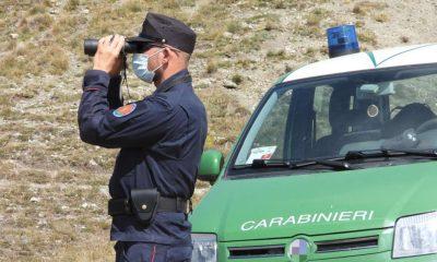Carabinieri Forestali Piemonte