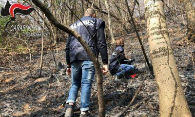 Volontario AIB appiccava incendi