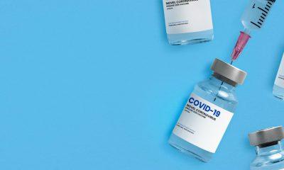 hub vaccinale torino