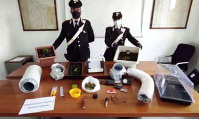 Sequestri dei carabinieri