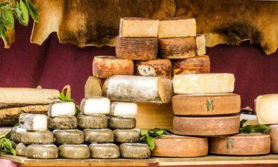 Fiera formaggi